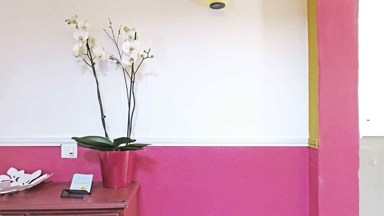 orchidee-contre-le-mur