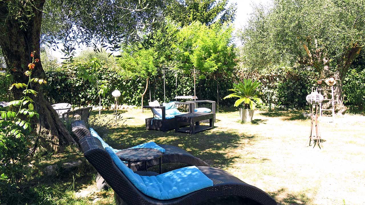 sun-bathing-in-our-garden